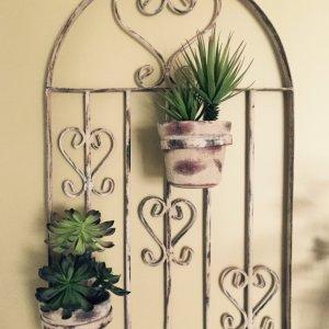 Arche de métal antique avec cactus