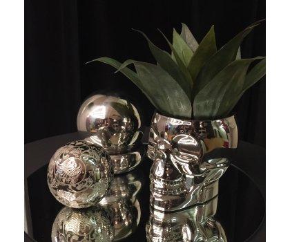 Centre de table - tête de squelette argent et plante